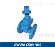 球墨铸铁美标软密封暗杆闸阀AWWA C509