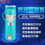 QSP水浸式喷泉泵 喷泉建设用泵 *