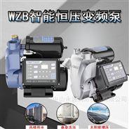 小型变频泵370W自吸家用抽水机