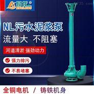 NL型立式污水泥浆泵河道清淤大流量抽塘泥泵