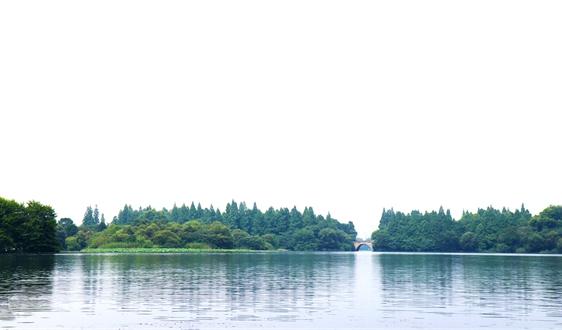 泸州渔子溪湿地:一泓清水绘就城市发展生态底色